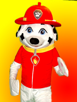 patrol paw mashall dalmation fireman birthday party new jersey